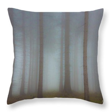Forest In The Fog Throw Pillow by Michal Boubin