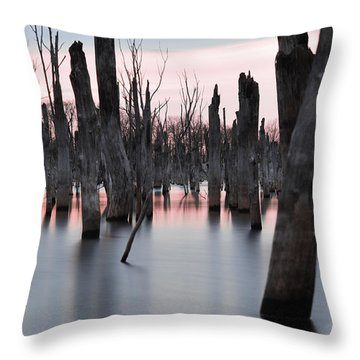 Forest In The Water Throw Pillow by Jennifer Ancker