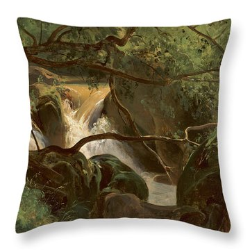 Forest Interior With A Waterfall Papigno Throw Pillow
