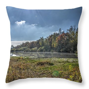 Forest Lake In Autumn Throw Pillow