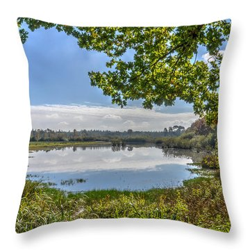 Forest Lake Through The Trees Throw Pillow