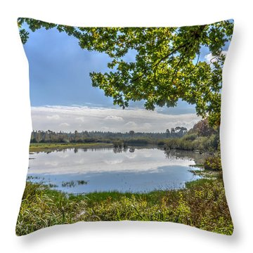 Forest Lake Through The Trees Throw Pillow