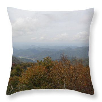 Forest Landscape View Throw Pillow