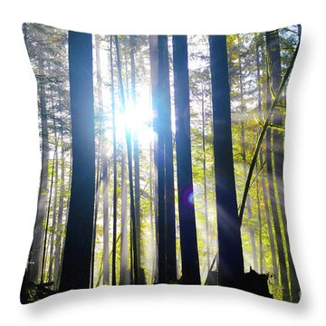 Forest Light Rays Throw Pillow