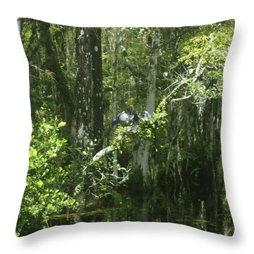 Forest Of The Swamp Throw Pillow