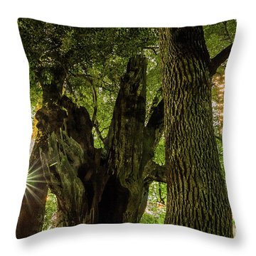 Throw Pillow featuring the photograph Forest Of Tokyo by Tatsuya Atarashi