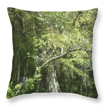 Forest On A Swamp Throw Pillow