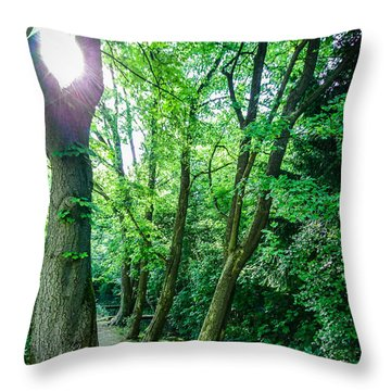Throw Pillow featuring the photograph Forest Path by Bee-Bee Deigner