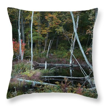 Forest Pond Throw Pillow by Joseph G Holland