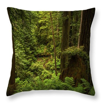 Forest Primeval Throw Pillow