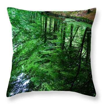 Forest Reflection Throw Pillow by Dave Bowman