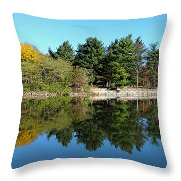 Forest Reflections Throw Pillow by Teresa Schomig