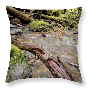 Forest River Details Throw Pillow