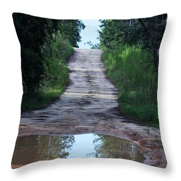 Forest Road And Puddle Throw Pillow