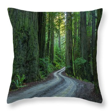 Forest Road. Throw Pillow by Ulrich Burkhalter