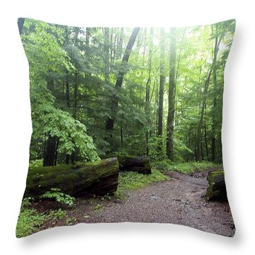 Forest Setting Smoky Mountains National Park Throw Pillow