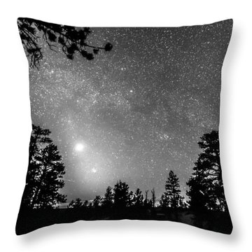 Forest Silhouettes Constellation Astronomy Gazing Throw Pillow by James BO  Insogna