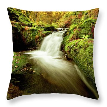 Forest Stream Throw Pillow by Jorge Maia