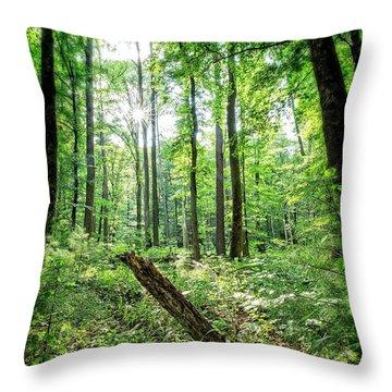 Throw Pillow featuring the photograph Forest Sun by Alan Raasch