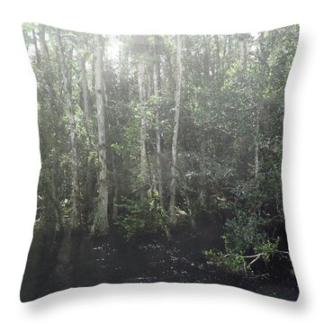 Forest, Sun Swamp Throw Pillow
