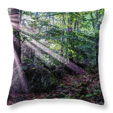Forest Sunbeams Throw Pillow