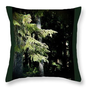 Forest Sunlight - 1 Throw Pillow