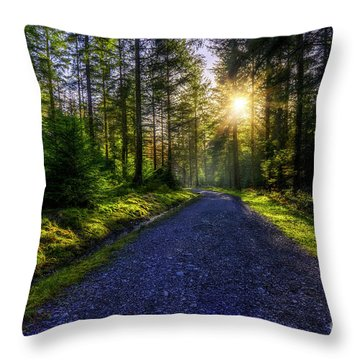 Throw Pillow featuring the photograph Forest Sunlight by Ian Mitchell