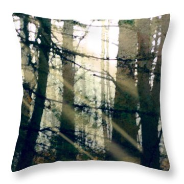 Forest Sunrise Throw Pillow by Paul Sachtleben