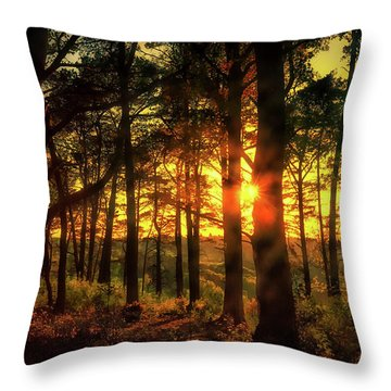 Forest Sunset Throw Pillow