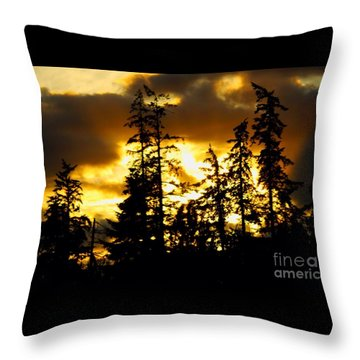 Throw Pillow featuring the photograph Forest Sunset  by Nick Gustafson