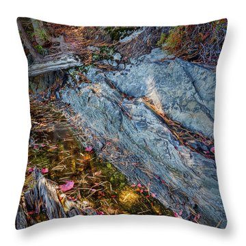Forest Tidal Pool In Granite, Harpswell, Maine  -100436-100438 Throw Pillow