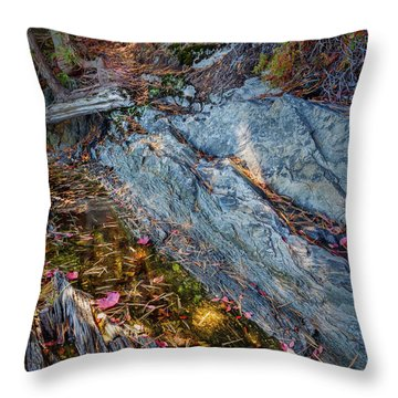Throw Pillow featuring the photograph Forest Tidal Pool In Granite, Harpswell, Maine  -100436-100438 by John Bald