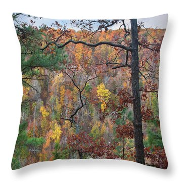 Forest Throw Pillow by Tim Fitzharris