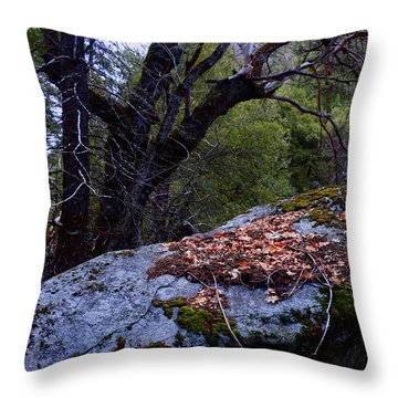 Throw Pillow featuring the photograph Forest Trail 01 2015 A by Walter Fahmy