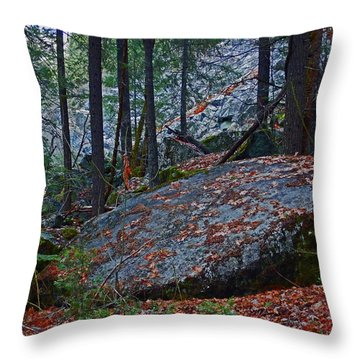 Throw Pillow featuring the photograph Forest Trail 01 2015 by Walter Fahmy