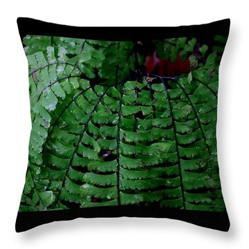 Forest Treasures #1 Throw Pillow