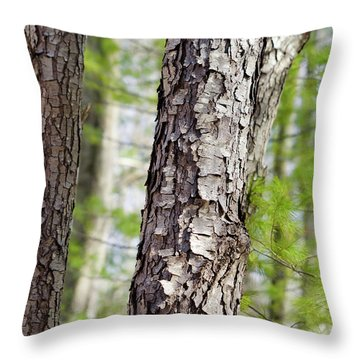 Forest Trees Throw Pillow by Christina Rollo