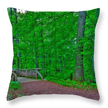 Forest Walk Throw Pillow by Kevin Hill