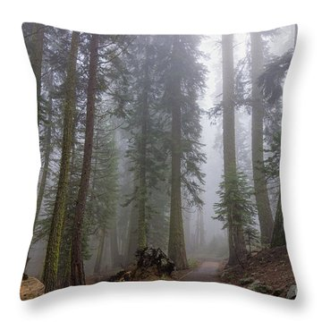 Throw Pillow featuring the photograph Forest Walking Path by Peggy Hughes