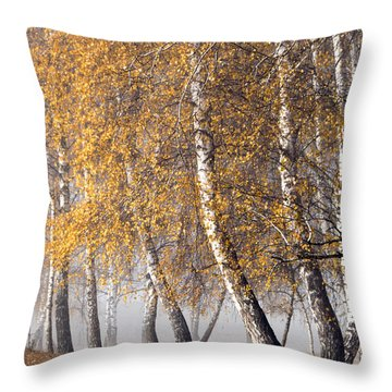 Forest With Birches In The Autumn Throw Pillow