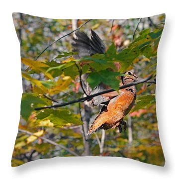 Forest's Timberdoodle Throw Pillow