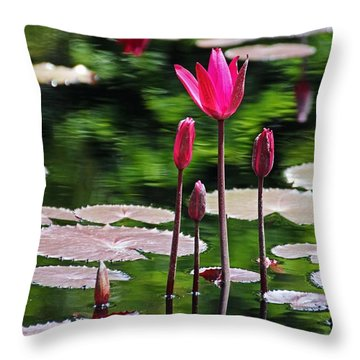 Forever And A Day Throw Pillow