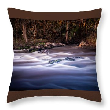 Forever Free Throw Pillow by Marvin Spates