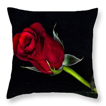 Forever Lasting Rose  Throw Pillow