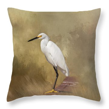 Throw Pillow featuring the photograph Forever Watching by Kim Hojnacki