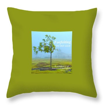 Throw Pillow featuring the photograph Forfeiting Last Word - No.2015 by Joe Finney