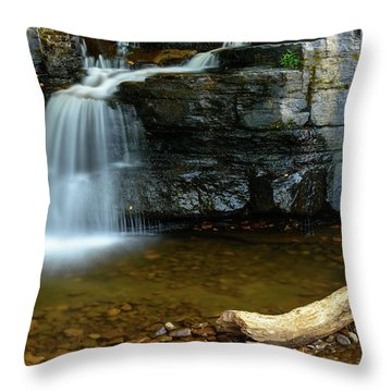 Forged By Nature Throw Pillow
