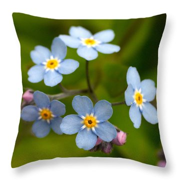 Forget-me-not Throw Pillow by Jouko Lehto