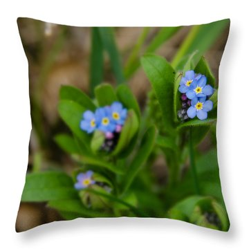 Forget Me Not Softly Throw Pillow