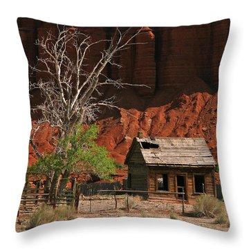 Forgotten - 365-129 Throw Pillow